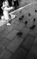 Feeding the pigeons, Venezia, by marcorossimusic